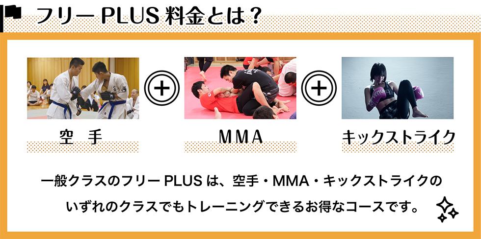 フリー PLUS料金とは?一般クラスのフリーPLUS は、空手・MMA・キックストライクの いずれのクラスでもトレーニングできるお得なコースです。